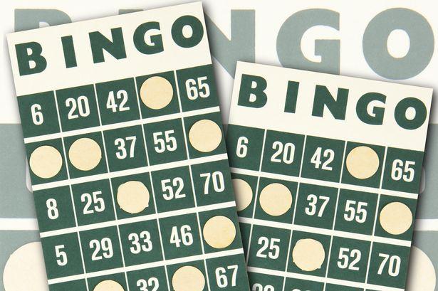 carton bingo business